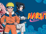 Replay Naruto - Episode 54 - La technique d'invocation