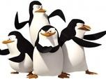 Replay Les Pingouins de Madagascar
