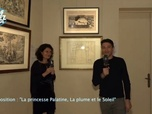 Replay IDF1 Chez Vous - Palatine musee avelines