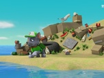 Replay Paw Patrol, la Pat'Patrouille - Sauvons les tortues