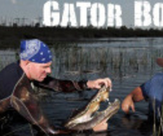 Gator Boys : Au Secours Des Alligators replay