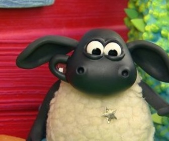 Replay Voici Timmy - S1 : Timmy gagne une étoile