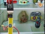 Replay La cuisine de la mort qui tue - episode 19