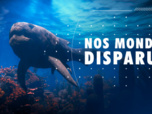 Replay Science grand format - Nos mondes disparus