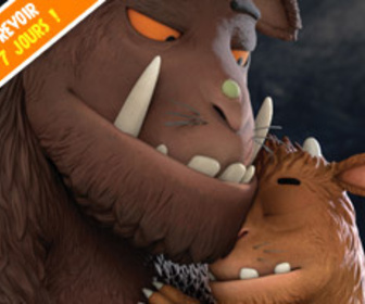 Gruffalo replay
