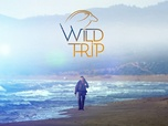 Replay Wild Trips - S1 : Les coureurs du Grand Nord