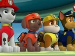 Replay Paw Patrol