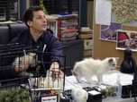 Replay Brooklyn 99 - S3 E19 : Les chatons de Terry