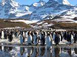 Replay Terres de glace